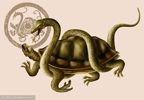 Black Tortoise The Symbolism of Animals and creatures in Chinese Mythology